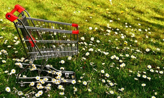 shopping card in field of flowers